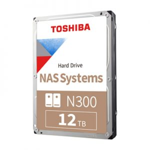 N300 – 12TB